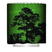 Evening Pine Shower Curtain