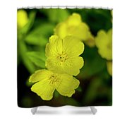 Evening Primrose Shower Curtain