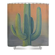 Evening Saguaro Shower Curtain