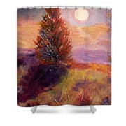 Evening Splendor Shower Curtain