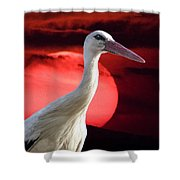Evening Stork  Shower Curtain