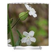 Evening Wildflower Shower Curtain