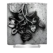 Everblooming Shower Curtain