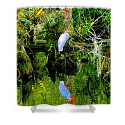 Everglades Egret Shower Curtain