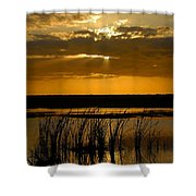 Everglades Evening Shower Curtain