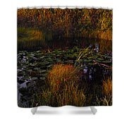 Everglades Pond Shower Curtain