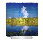 Everglades Smoke Shower Curtain