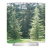 Evergreen Dance Shower Curtain