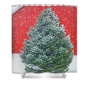Evergreen In Winter #1 Shower Curtain