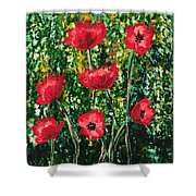 Every Dream Turns Up Poppies Shower Curtain