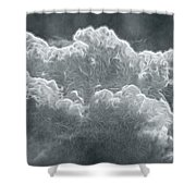 Every Lining Has A Silver Cloud Shower Curtain