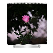 Every Rose Has Its Thorn Shower Curtain