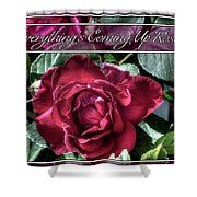 Everything's Coming Up Roses Shower Curtain