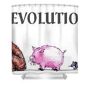 Evolution Shower Curtain