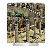 Excavations Shower Curtain
