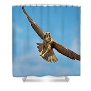 Exit Screen Right Shower Curtain