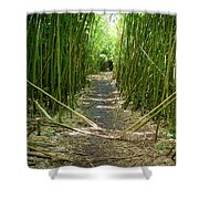 Exlporing Maui's Bamboo Shower Curtain