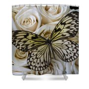 Exotic Butterfly On White Roses Shower Curtain