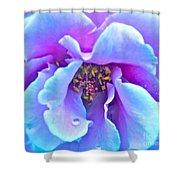 Exotic Dancer Shower Curtain