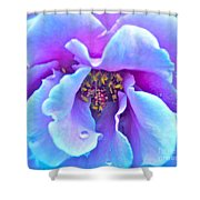 Exotic Dancer Shower Curtain