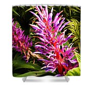 Exotic Flora Shower Curtain