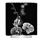 Exotic Orchid Bw Shower Curtain