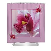 Exotic Temptation Shower Curtain