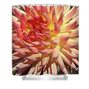 Exploding On The Scene Shower Curtain by Valeria Donaldson