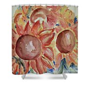 Exploding Suns Shower Curtain