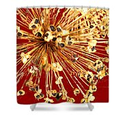 Explosion Enhanced Shower Curtain