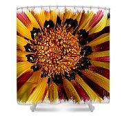 Explosion Of Color - Framed Shower Curtain