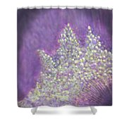 Expodential Growth Shower Curtain