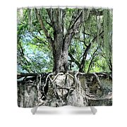 Exposed - Oak Roots Shower Curtain
