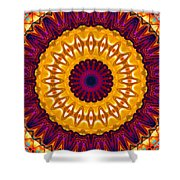 Expression No. 7 Mandala Shower Curtain