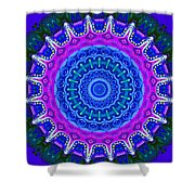 Expression No. 8 Mandala 3d Shower Curtain