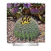Expressionalism Budding Cactus Shower Curtain