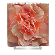 Expressionist Rose Shower Curtain