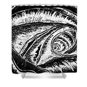 A0216a Expressive Abstract Black And White Shower Curtain by Ricardos Creations