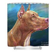 Expressive Painting Of A Red Nose Pit Bull On Blue Background Shower Curtain