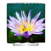 Exquisite Waterlily Shower Curtain