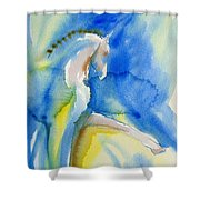 Extended Trot In Blue Shower Curtain