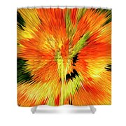 Extruded 947 Shower Curtain