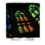 Exuberant Stained Glass Windows Shower Curtain