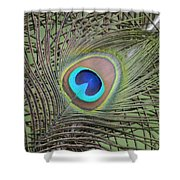 Eye  2 Shower Curtain