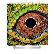 Eye Dragon Forest Shower Curtain