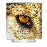 Eye Of A Wolf. Shower Curtain