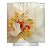 Eye Of Peony Nature Photograph Shower Curtain