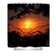 Eye Of Ra  Shower Curtain