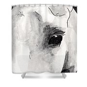 Eye Of The Beauty Shower Curtain
