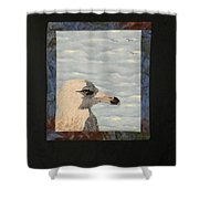 Eye Of The Gull Shower Curtain by Jenny Williams